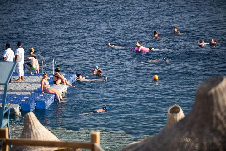 Sharm Plaza - snorkelling off the jetty